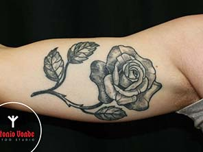Antonio vonde tattoo studio maribor black grey rose tattoo underarm - črna senčena vrtnica biceps
